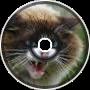 Furious Feline