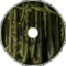 Deep in the Garas Forest
