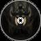 The Key [NeuroFunk]