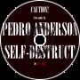 Self-Destruct