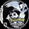 pokemon black gym fight