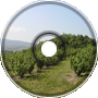 Hillside orchard