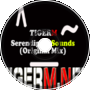 TIGER M - Serendipity Sounds (Original Mix)