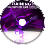 It's Raining Men Remix - The Living Tombstone ft. Eilemonty