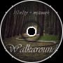 Walkaround