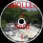 SWOLLEN / SAID I