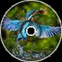 Waterbird (re-imagined)