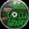 Javafall – Gorilla Grande