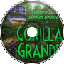 Wet Grounds Abound – Gorilla Grande