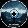 Psycodelik - Next Level