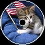 The Kitty Anthem