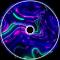 VixageOfficial - StarGaze