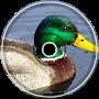 A Duck Type Beat