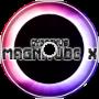 Magnitude X