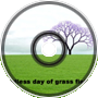 Endless Day of Grass Fiel