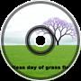 Endless Day of Grass Fiel