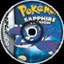 Pokemon RSE Gym Battle!