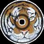 Tiger Express