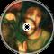 Greensleeves (Hardstyle Rmx)