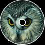 Annoying Owl - Zelda [Loop]