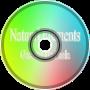 Natural Elements - Gaetano De Paola