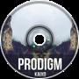 Prodigm (Original Mix)