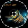 DJ Spyroof & DJ East Wolf - Crazy Soul