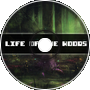 Life in the Woods