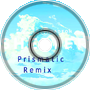 Shelter (Prismatic Remix)