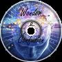 Wonder & Confusion
