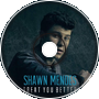 Shawn Mendes - Treat You Better (Short Remix)