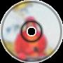 Observation; Exploration Album Sampler