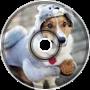 Dog - Ebanko