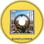 Post Malone - Sunflower (NiTi Cover)