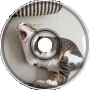 Derpcat - Orchestral Catto