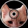 Feline Energy