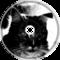 ~backgroundcat~ the