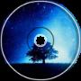 L. Mity - Starry Night