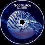 K-4998572 - Noctiluca