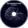K-4998572 - Astrophyton