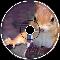 Wise Old Squirrel - NickSenny