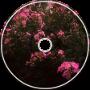 IVIVARELUS - te quiero (somanylynx remix)