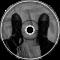 junk post (remix, alt version)