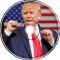 Niko Krupinkin - Trump it!